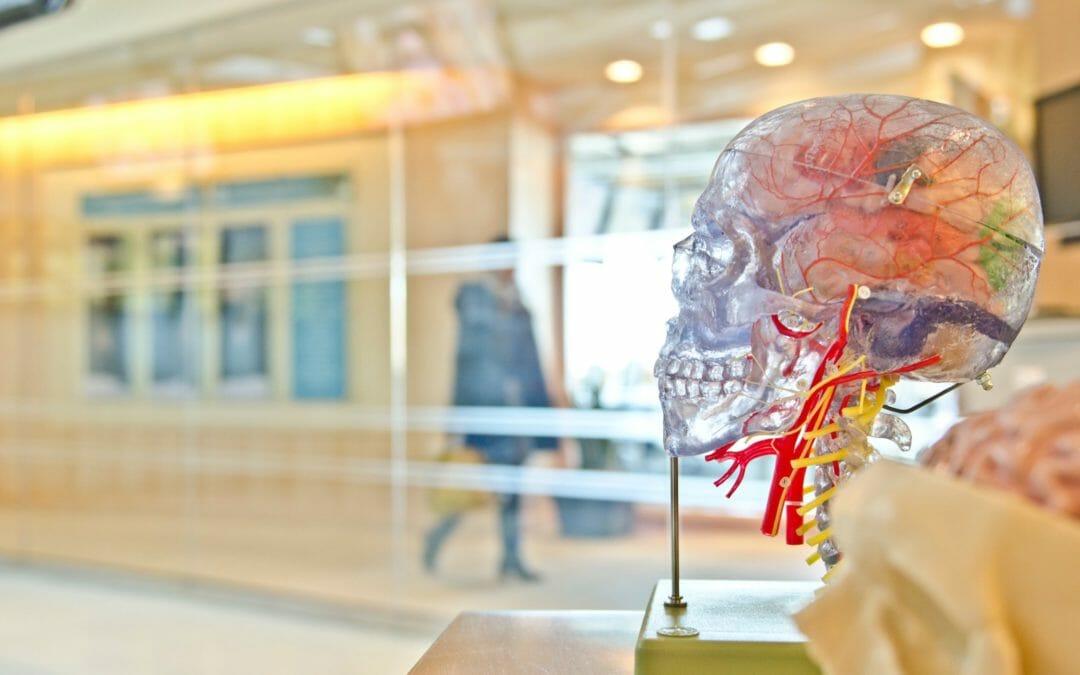 Anthea Health Blog Post: Brain Gut Connection